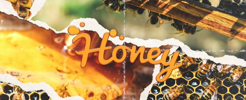 "HARRY FLAME – ""HONEY"""